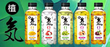 广东猫咖饮料食品有限公司