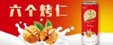 河南中资饮品有限公司